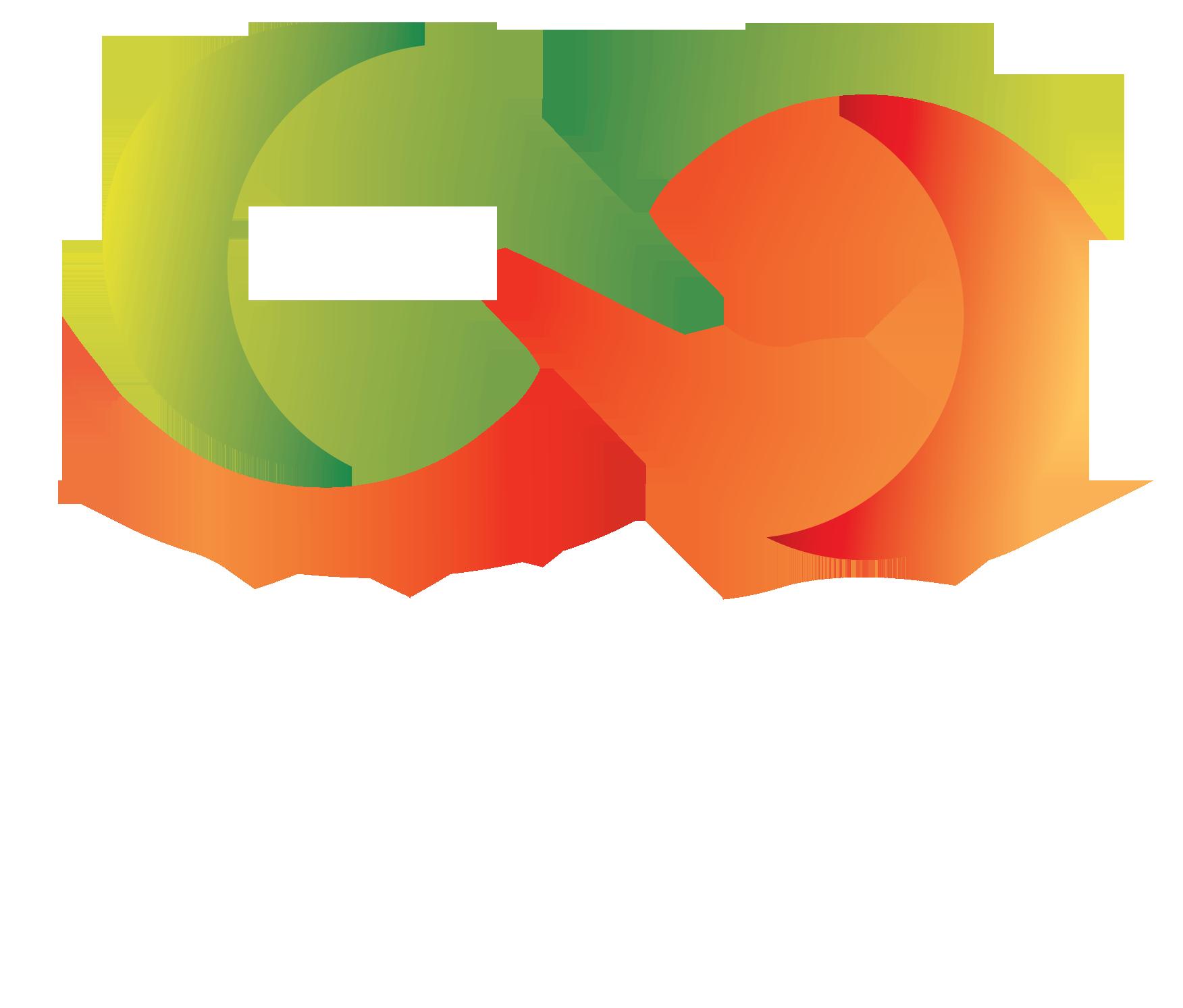 Pulse Studio Wassenaar